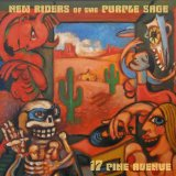 Перевод текста музыканта New Riders Of The Purple Sage песни – Just the Way It Goes с английского на русский